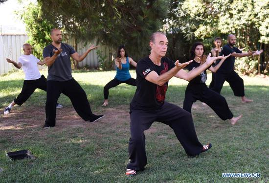 More and more Turks practice Tai Chi